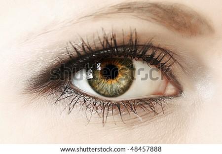 Woman eye closeup - stock photo