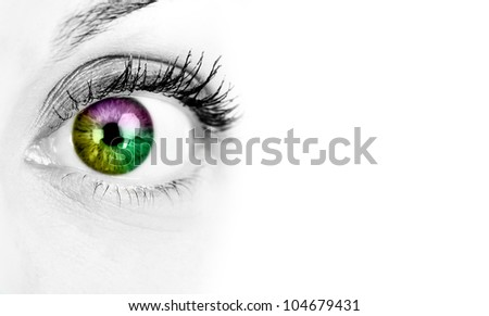 Woman eye. Isolated on white background. - stock photo