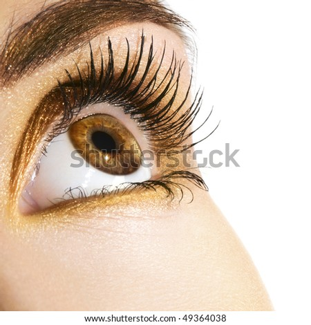 Woman eye with golden makeup. Space for text. - stock photo