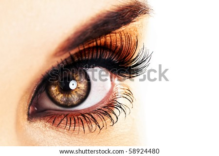 Woman eye  with long eyelashes closeup. Space for text. - stock photo
