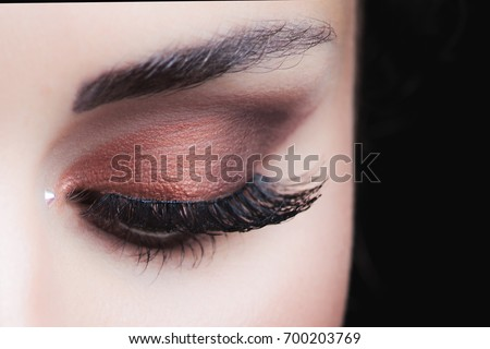 woman eye  with perfect  brown  makeup closeup studio shot