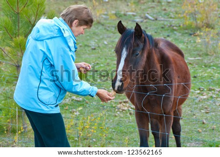 woman feeding horse - stock photo
