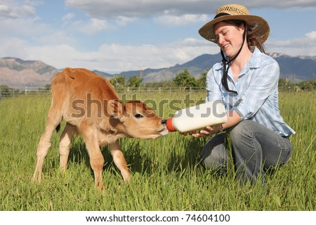 woman feeding milk bottle to cute baby cow - stock photo