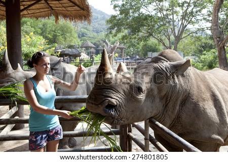 Woman feeding the rhinoceros  at zoo - stock photo