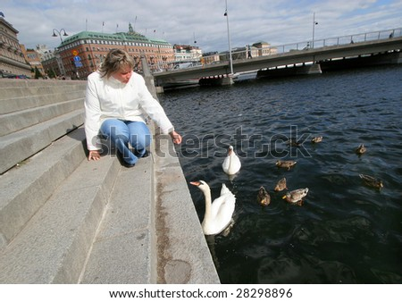 woman feeds birds in stockholm - stock photo