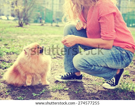 woman feeds  her dog outdoor - stock photo