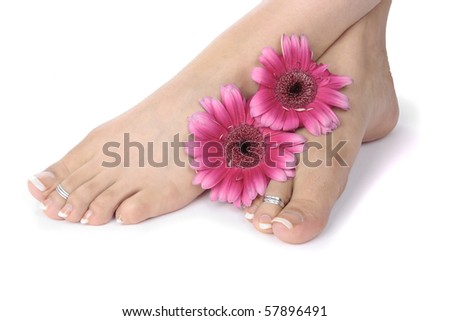 Woman  feet  and flowers  over white - stock photo