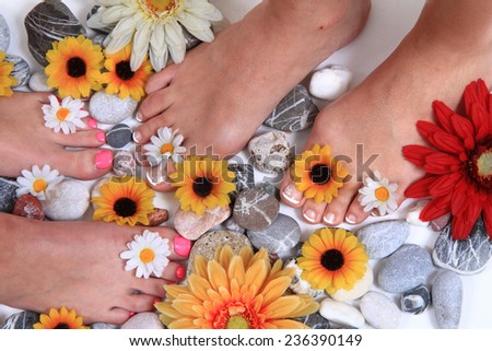woman feet (pedicure) - stock photo