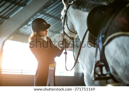 Woman fixing harness on a horse - stock photo