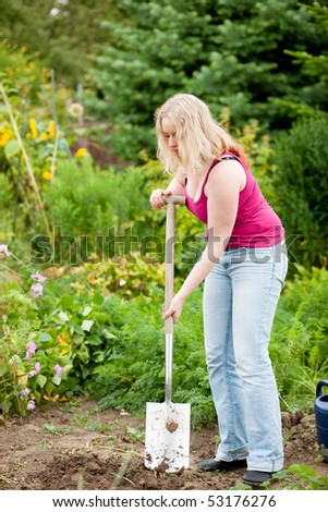 Woman gardener digging the soil in spring with a spade to make the garden ready