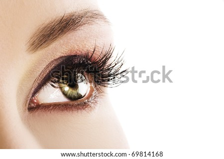 Woman green eye closeup. Space for text. - stock photo