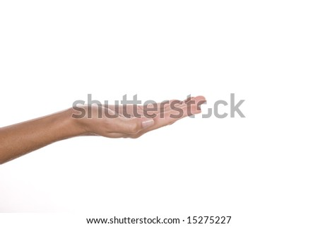 Woman hand - stock photo