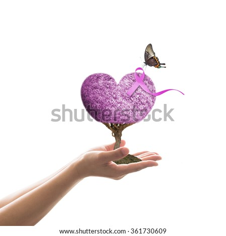 Woman hand giving purple heart shape love living tree life w/ symbolic ribbon & butterfly isolated on white background: Cancer awareness (all kinds) concept raising support people living w/ illness - stock photo
