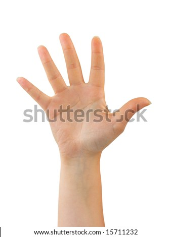 Woman hand (palm) isolated on white background - stock photo