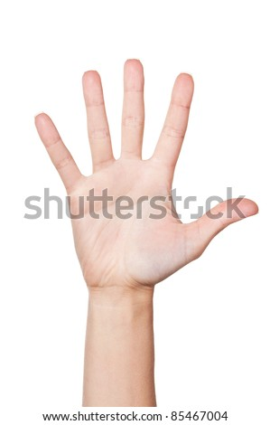 Woman hand (palm) isolated on white background