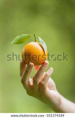 Woman hand with grapefruit - stock photo