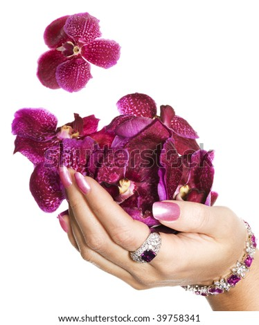 Woman hand with orchids - stock photo