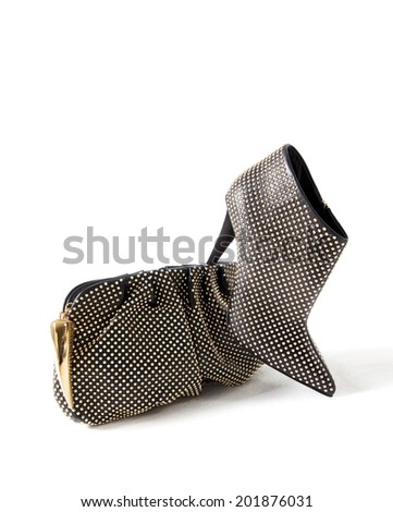 woman handbag and shoe isolated background