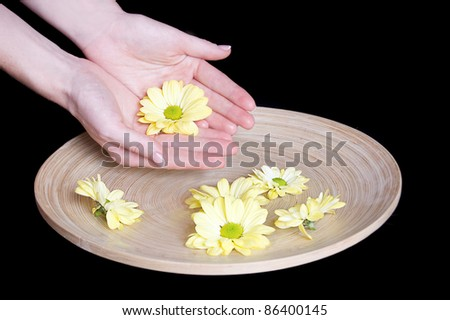 Woman hands and flower in bucket of water isolated on black