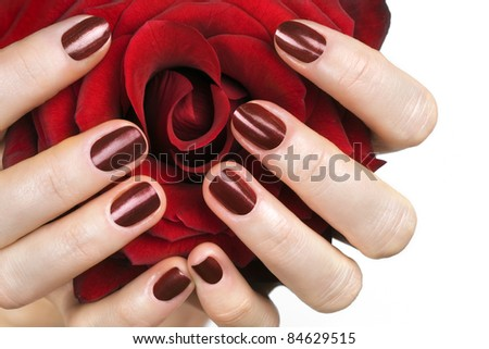 Woman hands and red rose. Selective focus. - stock photo