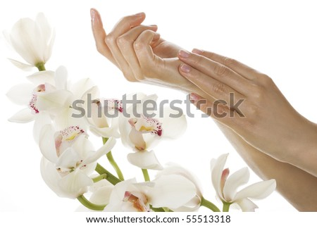 Woman hands and white orchids - stock photo