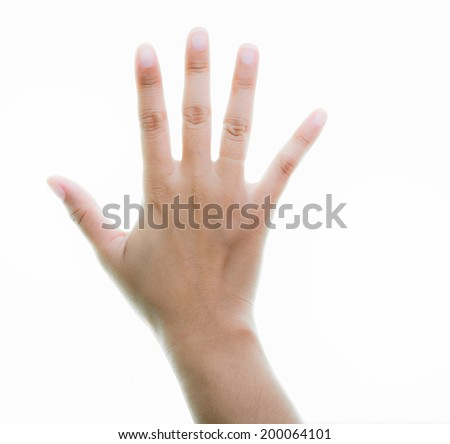 Woman hands holding isolate on over white backgrounds - stock photo