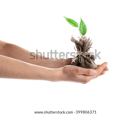 Woman hands holding young plant in pouch, isolated on white - stock photo