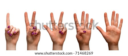 Woman hands isolated on white - stock photo