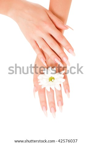Woman hands with flower isolated on white background - stock photo
