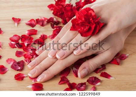 Woman hands  with red petals and flower - stock photo
