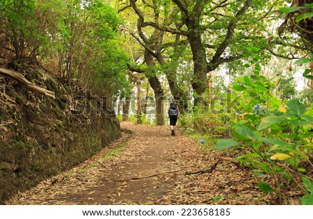 Woman hiking along a levada on the island of Madeira. - stock photo