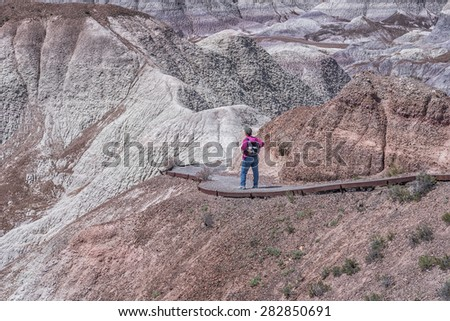 Woman Hiking Blue Mesa At The Petrified Forest National Park - stock photo