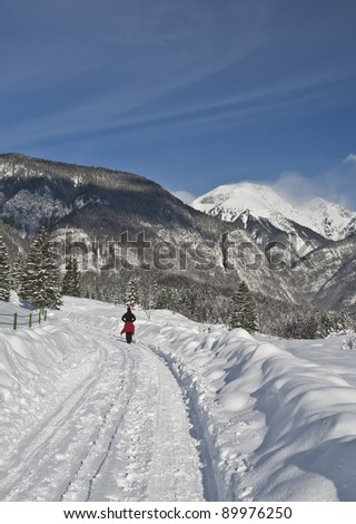 woman hiking in forest in fresh snow in winter on sunny day, bohinj region, slovenia
