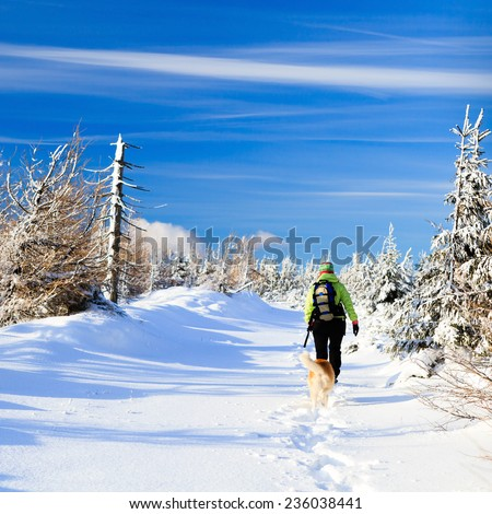 Woman hiking in winter mountains with akita dog, trekking in beautiful white nature on powder snow, blue clear sky. - stock photo