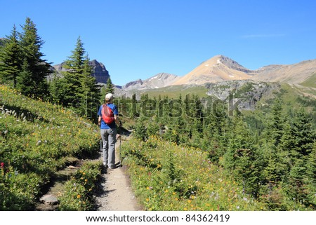 Woman Hiking Through an Alpine Meadow in the Rocky Mountains - Jasper National Park, Alberta, Canada - stock photo