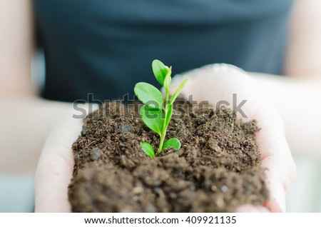 Woman holding loam with growing green flower. Detail on hands with clay and growing flower. Very soft focus and upper view.