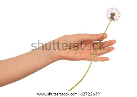 Woman holding three blowball in the hand