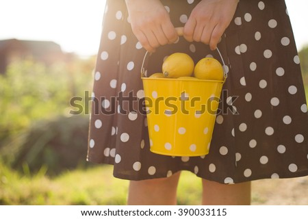 Woman in a brown dotted dress holding a yellow bucket full of organic lemons. Citrus harvest in the garden. Healthy lifestyle. Countryside life. Lady with fruit. Countryside landscape. - stock photo