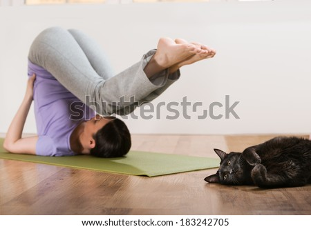 Woman in a traditional stretching yoga pose at home with her cat relaxing near her - stock photo