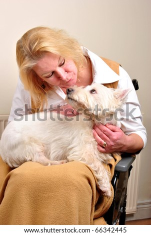 woman in a wheelchair is talking to her dog - stock photo