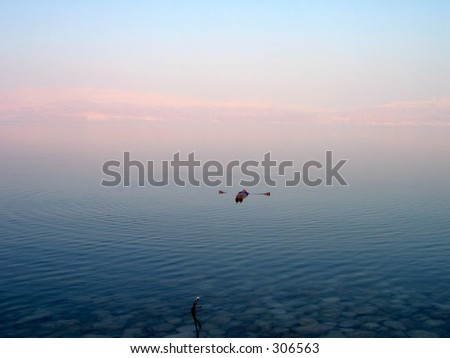 Woman in bikini floating in the dead sea with the mountain of Jordan in the background - stock photo