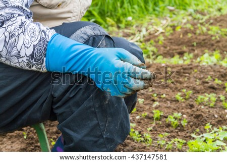 Woman in blue gloves working in the organic garden.