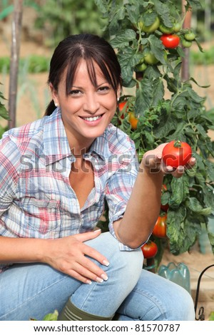 Woman in garden kneeling by tomato plant - stock photo