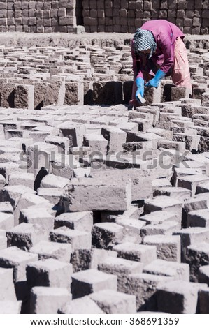 Woman in manufacture of clay or mud bricks, Ladakh, India. - stock photo