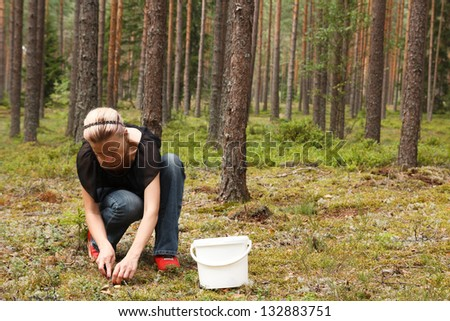 Woman in the forest picking up Mushrooms - stock photo