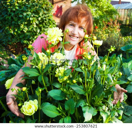 Woman in the garden cares for flowers. Female with dahlias - stock photo