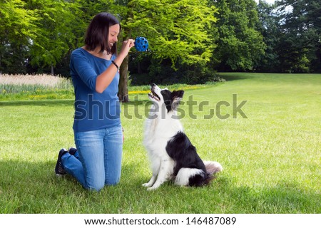 Woman in the park playing fetch with her border collie dog - stock photo