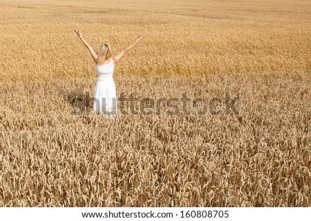 Woman in white dress in cornfield - stock photo