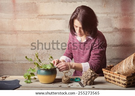 Woman is handcrafting a house plant - stock photo
