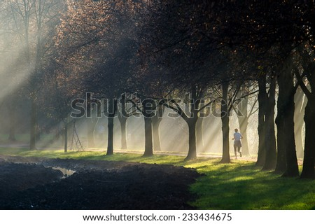 Woman jogging on a sun ray lit park path along the beautiful avenue of trees while the sun rays can be clearly seen through the misty fog. - stock photo